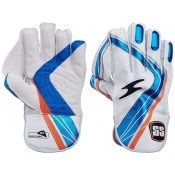 Wicket Keeping Equipment (9)